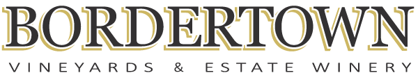 bordertown_logo
