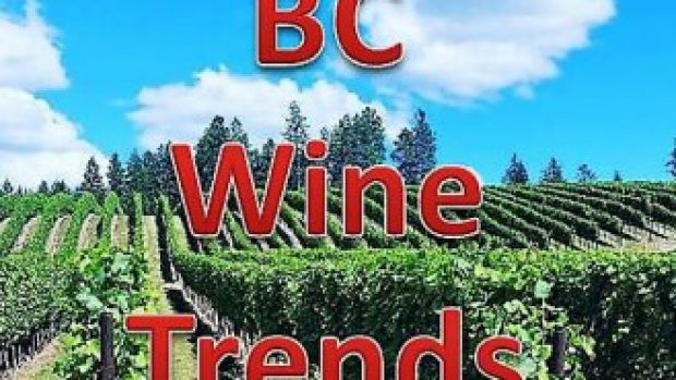 Great Bordertown article on BC Wine Trends